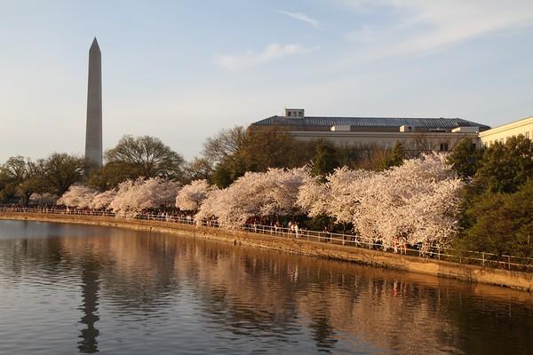 In and Around Washington DC